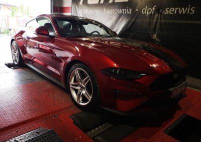 Mustang Hamownia (3)